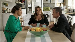 Naomi Canning, Terese Willis, Paul Robinson in Neighbours Episode 8358