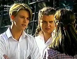 Billy Kennedy, Toadie Rebecchi, Anne Wilkinson in Neighbours Episode 2813