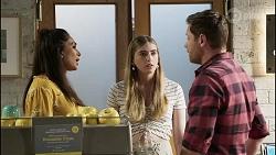 Dipi Rebecchi, Mackenzie Hargreaves, Shane Rebecchi in Neighbours Episode 8374
