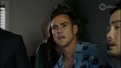 Pierce Greyson, Chloe Brennan, Aaron Brennan, David Tanaka in Neighbours Episode 8382
