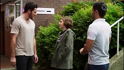 Shaun Watkins, Emmett Donaldson, David Tanaka in Neighbours Episode 8396