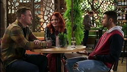 Kyle Canning, Nicolette Stone, Levi Canning in Neighbours Episode 8420
