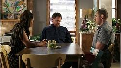 Dipi Rebecchi, Shane Rebecchi, Toadie Rebecchi in Neighbours Episode 8429