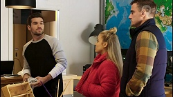 Ned Willis, Roxy Willis, Kyle Canning in Neighbours Episode 8446