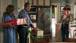 Jane Harris, Karl Kennedy, Nicolette Stone in Neighbours Episode 8456