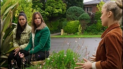 Yashvi Rebecchi, Bea Nilsson, Roxy Willis in Neighbours Episode 8459
