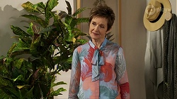 Susan Kennedy in Neighbours Episode 8461