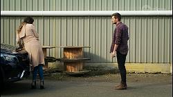 Scarlett Brady, Ned Willis in Neighbours Episode 8465