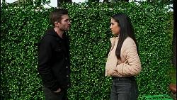 Ned Willis, Yashvi Rebecchi in Neighbours Episode 8479