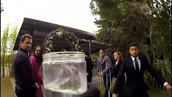 Shane Rebecchi, Dipi Rebecchi, Yashvi Rebecchi, Ned Willis, Kyle Canning, Roxy Willis, Levi Canning in Neighbours Episode 8479