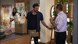 Dipi Rebecchi, Shane Rebecchi, Toadie Rebecchi in Neighbours Episode 8484