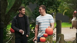 Ned Willis, Kyle Canning in Neighbours Episode 8485