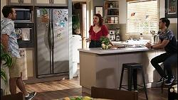 Aaron Brennan, Nicolette Stone, David Tanaka in Neighbours Episode 8496