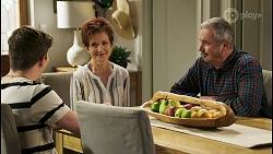 Hendrix Greyson, Susan Kennedy, Karl Kennedy in Neighbours Episode 8504