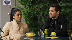 Yashvi Rebecchi, Ned Willis in Neighbours Episode 8507