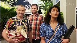 Toadie Rebecchi, Shane Rebecchi, Audrey Hamilton in Neighbours Episode 8509