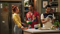 Nicolette Stone, Aaron Brennan, David Tanaka in Neighbours Episode 8520