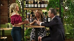 Amy Greenwood, Terese Willis, Paul Robinson in Neighbours Episode 8531