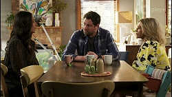 Dipi Rebecchi, Shane Rebecchi, Amy Greenwood in Neighbours Episode 8540
