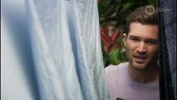 Ned Willis in Neighbours Episode 8542