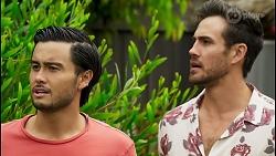 David Tanaka, Aaron Brennan in Neighbours Episode 8543