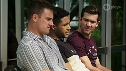 Kyle Canning, Levi Canning, Ned Willis in Neighbours Episode 8547