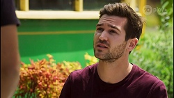 Levi Canning, Ned Willis in Neighbours Episode 8547