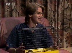 Brett Stark in Neighbours Episode 2138