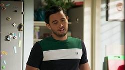 David Tanaka in Neighbours Episode 8588