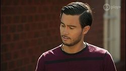 David Tanaka in Neighbours Episode 8597