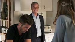 Ned Willis, Paul Robinson, Harlow Robinson in Neighbours Episode 8616