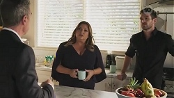Paul Robinson, Terese Willis, Ned Willis in Neighbours Episode 8617