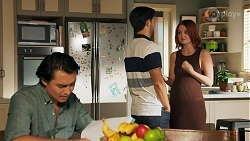 Leo Tanaka, David Tanaka, Nicolette Stone in Neighbours Episode 8644