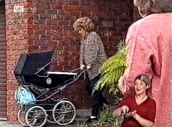 Cheryl Stark, Marlene Kratz in Neighbours Episode 2213