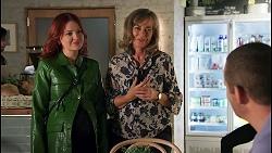 Nicolette Stone, Jane Harris, Toadie Rebecchi in Neighbours Episode 8660