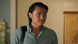 Leo Tanaka in Neighbours Episode 8669