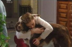 Michelle Scully, Harvey in Neighbours Episode 4134