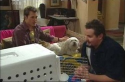 Stuart Parker, Bob, Toadie Rebecchi in Neighbours Episode 4191