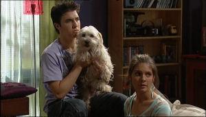 Stingray Timmins, Bob, Rachel Kinski in Neighbours Episode 5049