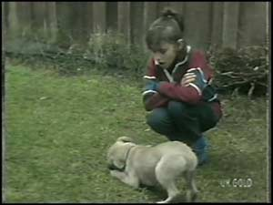 Lucy Robinson, Basil in Neighbours Episode 0100
