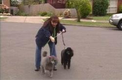 Susan Kennedy, Stella/Blanche in Neighbours Episode 4237