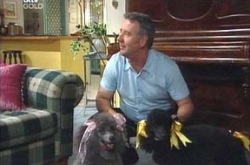 Gino Esposito, Stella/Blanche in Neighbours Episode 4239